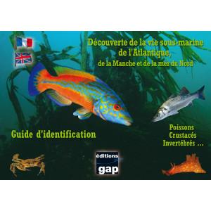 Guide d'identification l'Atlantique, la Manche et la mer du Nord en 8 plaquettes GAP EDITIONS