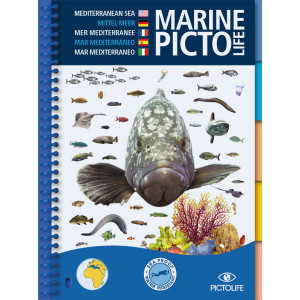 Guide d'identification 58 pages immergeable MEDITERANNEE PICTOLIFE