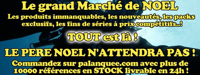 le marché de noel sur palanquee.com